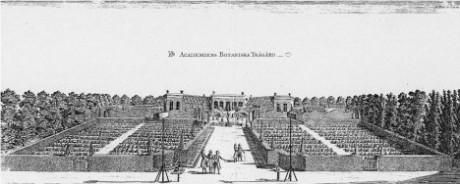 Linnés trädgård på 1700-talet.