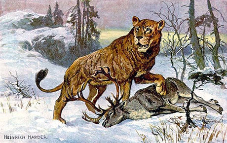 lejonmannen_lejon
