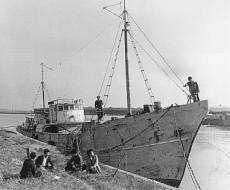 Den japanska fiskebåten Daigo Fukuryu Maru