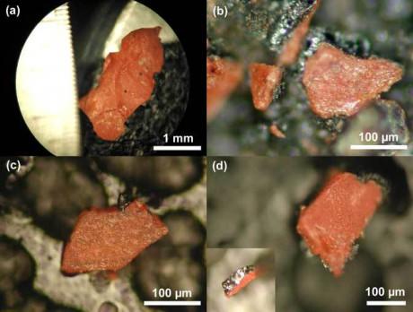 Rester av vad som sägs vara nanotermit, ett högteknologiskt sprängämne som påträffades i dammet från rasmassorna av World Trade Center.