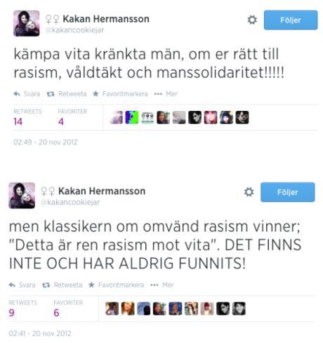 Några av Karin Hermanssons hatiska inlägg.