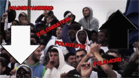 massinvandring folkutbyte