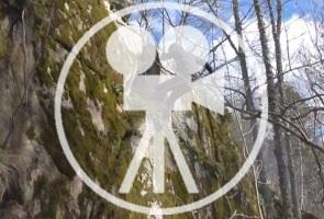 Skogsvistelse med repellering i Stockholm