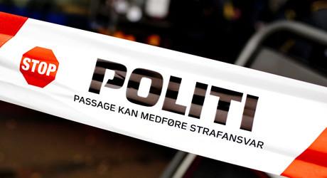 Dansk-politi