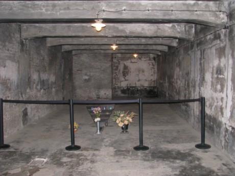 ausch-gas-chamber_2012-1024x768
