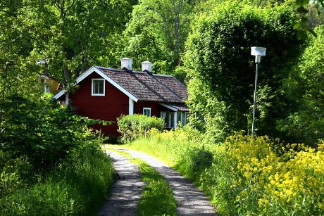 Den svenska sommaren ger intryck på gammal och ung.
