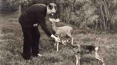 hitler deer