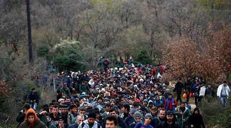 invandrarinvasion (2)