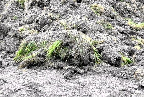 Grävmaskinen har samlat upp jordhögar i Vårby gårds moskébygge.