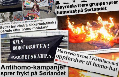 Ett axplock ur den mängd artiklar som folkfientlig media skrivit om aktionen.