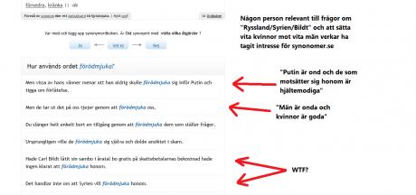 Smygpropaganda i exempelmeningarna? Skärmdump/läsarbild: Asgeir. Klicka för större bild.