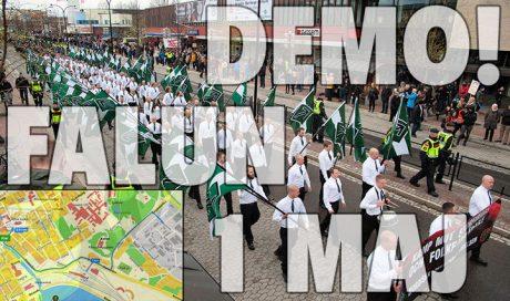 demo Falun