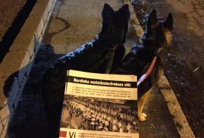 Fortsatt arbete mot folkförrädare i Trelleborgs kommun