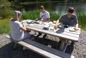 Dag av valarbete i Bollnäs