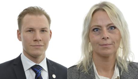 Sverigedemokraterna nordiska motstandsrorelsen