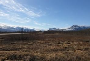Social aktivitet i Kiruna