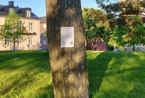 Autonoma upplyste om RFSL:s pedofilkopplingar i Luleå