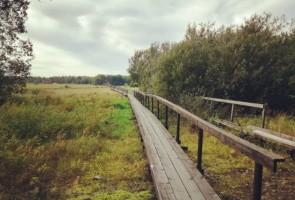 Höstvandring i Uppland