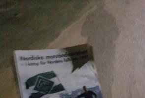 Flygbladsutdelning i Tingsryds kommun